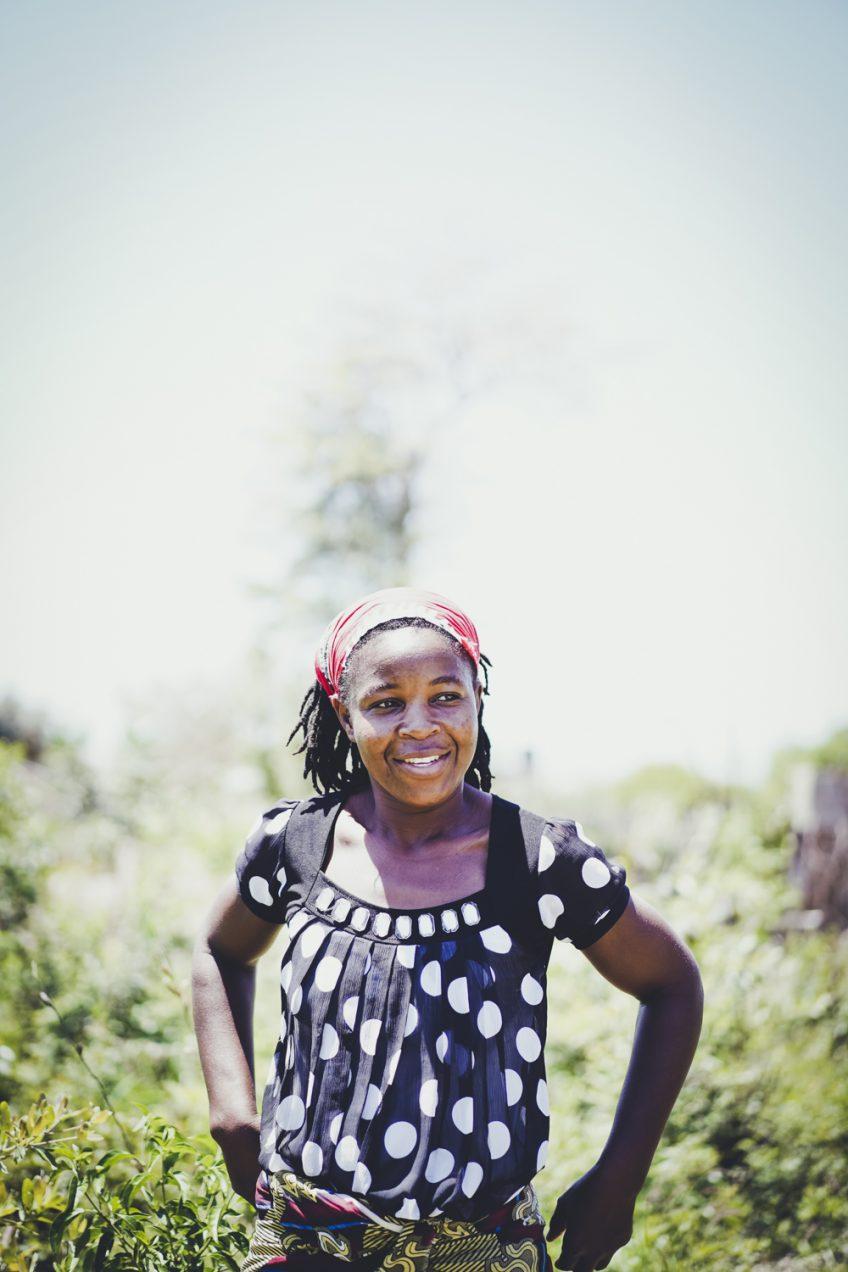 モザンビーク田舎の畑へ 歯磨きの木
